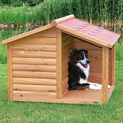 5 Best Kennels For Dogs 2020 (Marvelous) – Pro Cons